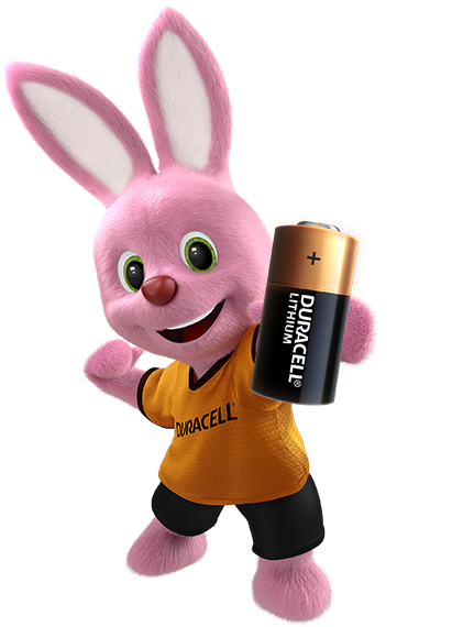 Bunny Holding batteries 123 HPL
